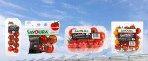 agroquebec agriculture quebec Sagami savoura