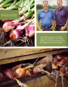 Delfland_LR
