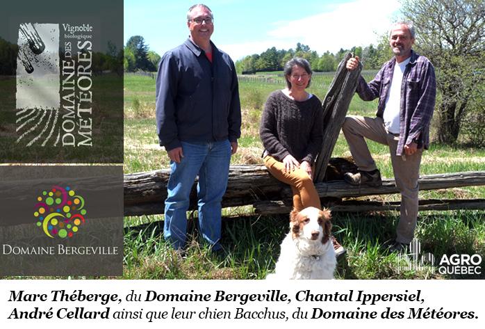 Domaine Bergerville - Domaine des météores