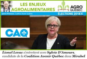 Sylvie D'Amours, CAQ