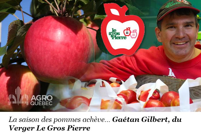 La saison des pommes achève