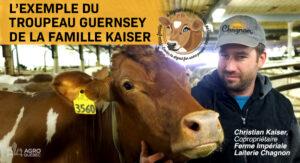 Guernsey Famille Kaiser