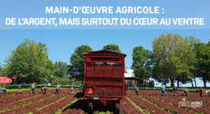 Main-d'oeuvre agricole